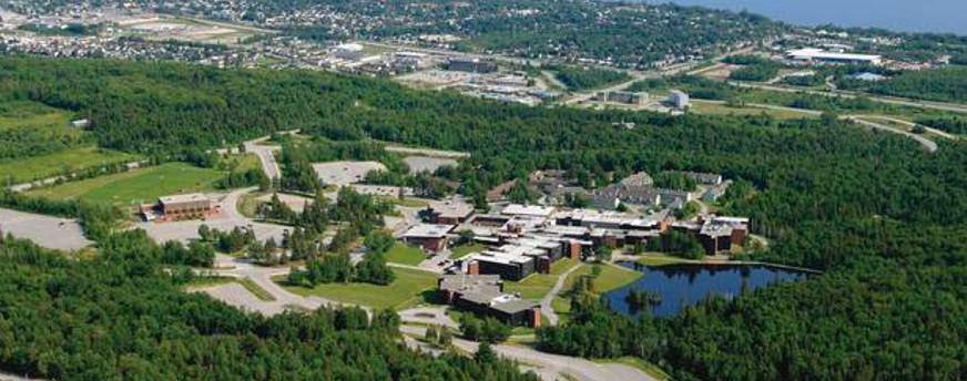 Nipissing University must consider significant downsizing: audit  Thumbnail Image